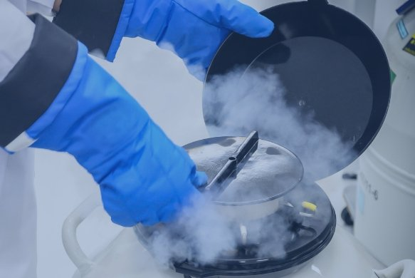 Pedieos IVF Single Sperm Freezing